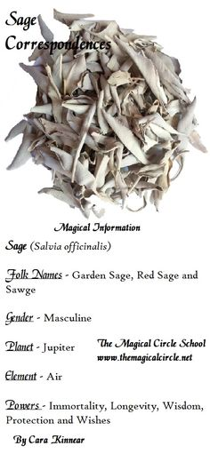 Sage Correspondences. The Magical Circle School www.themagicalcircle.net