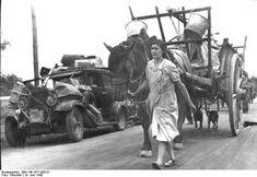 1939 1940 Réfugiés français sur la route de l'exode, 19 juin 1940