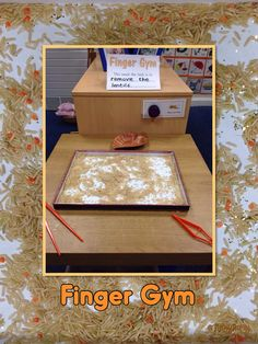 Finger Gym - Rice and lentils, pick out with fingers, tweezers or chopsticks.