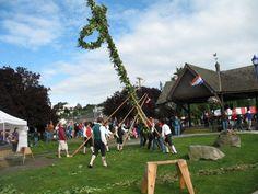 Raising the Maistang (Midsummer pole) in Poulsbo, WA