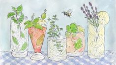 5 Easy-to-Grow Herbs for Fresh Spring Cocktails. There's nothing quite like adding some handpicked leaves to your beverage or meal.
