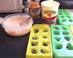 Recipe for Homemade Frosty Paws for dogs, but I am going to go out on a limb and say this looks pretty tasty for people too! * 1 large container (32 oz) of low-fat, plain, organic yogurt (we like Stoneyfield Farm)    * 3 handfuls of fresh (organic) blueberries    * 1 banana    * 2 tbsp of organic peanut butter