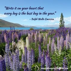 """Write it on your heart that every day is the best day in the year."" - Ralph Waldo Emerson"