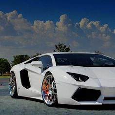 Slick White Lamborghini Aventador  #car #cars #auto #autos #luxury #fastcars #fastlane #luxe #living #exotic #exoticcars #dream #dreamcars #lamborghini #aventador #vroom #sport #cool #awesome #hot #sexy #great #style  www.gmichaelsalon.com