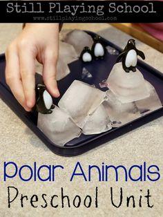 Still Playing School: Polar Animal Gross Motor Games