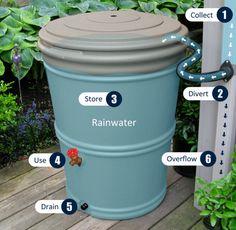 Bushman - 60 Gallon Recycled Rain Barrel (CRB60)