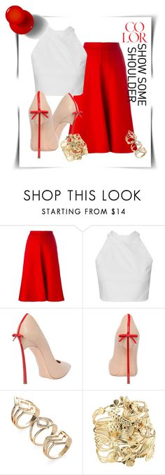 """red red skirt"" by cordelia-fortuna ❤ liked on Polyvore featuring Lemaire, Casadei and Aurélie Bidermann"