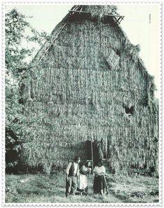 Casas pajizas.Aguamansa.La Orotava.1945
