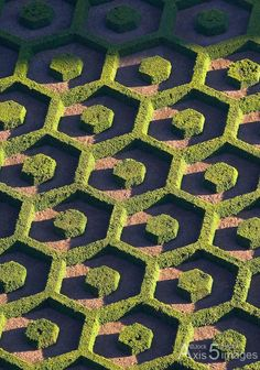 Famous Gardens of the World - Topiary, Botanical Garden, Brussels, Belgium