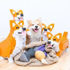 """3,476 Likes, 213 Comments - Mᴀʀᴄᴇʟ """"Lᴇ Cᴏʀɢɪ ®"""" (@lecorgi) on Instagram: """"Day 45: They still suspect nothing ________________ Papa has FINALLY finished to assemble our four…"""""""