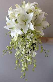 Lilies and Dendrobium orchids