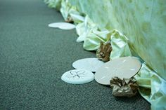 Sand Dollar hallway decoration ideas for Shipwrecked VBS. Explore more decoration ideas at Concordia Supply!
