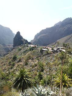 Masca on upea luonnonkaunis laakso komeiden vuorten keskellä Teneriffalla. Laaksoon vievät kapeat serpentiinitiet ovat ainoa reitti nähdä tämä saaren helmi. Lue lisää blogista! // www.kookospalmunalla.fi // Masca is a wonderful naturally beautiful valley in the middle of massive mountains in Tenerife. The narrow serpentine roads are the only way to reach the valley and the most beautiful spot on the island. More on blog! // #masca #tenerife #teneriffa #kookospalmunallablog #matkablogi Naturally Beautiful, Most Beautiful, Canary Islands, Safari, Middle, River, Mountains, Lifestyle, Nature