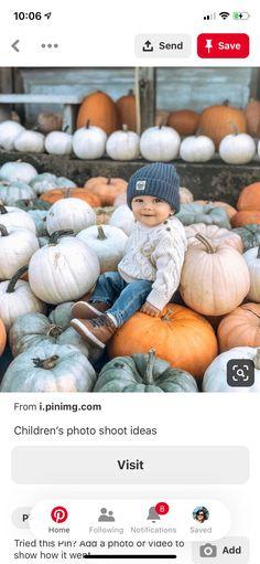 Portrait Shots, Pumpkin, Photoshoot, Pumpkins, Photo Shoot, Squash, Photography