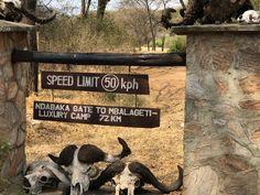 Robert Lee, Kenya Tanzania Safari with Victoria Falls