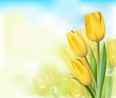 Yellow Tulips Background~~J Scenery Background, Frame Background, Paper Background, Background Images, Framed Wallpaper, Paper Wallpaper, Flower Wallpaper, Borders And Frames, Borders For Paper