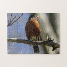 American Robin Photo Puzzle. Jigsaw Puzzle - home gifts ideas decor special unique custom individual customized individualized