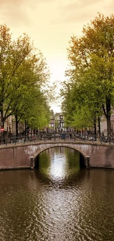 Amsterdam, Netherlands by Private Jet with Air Charter Service