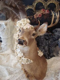 "Vintage Altered OOAK Taxidermy Deer Head Mount SHABBY Cottage Decor 'ALEXANDER'-This is so sweet....but my husband would have ""my head"" if I did this to his mounted deer.....but I'm tempted....lol"