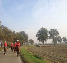 #HorseAcademy's outsiders / wondering the beautiful country side with #LucaPanerai - protected by KEP Italia!