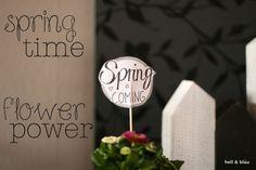 Papierstecker mit schönen Sprüchen für die langweiligen Blumentöpfe läuten die Frühlingszeit ein.