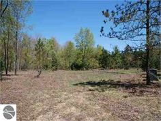 Thompsonville, Benzie County, Michigan Land For Sale - 5 Acres