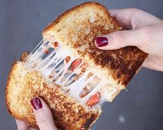Devour the Details: Grilled Cheese Weekend at Wilson Farm