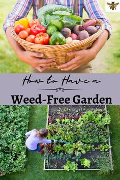Love gardening but hate the weeds? Want to keep it organic? Perfect! I can show you how to garden organically and to greatly reduce your weeds this year! Less weeds = More food! #weedfreegarden Organic Gardening Tips, Vegetable Gardening, Container Gardening, Sustainable Gardening, Gardening Hacks, Growing Herbs, Growing Vegetables, Grow Your Own Food, Grow Food