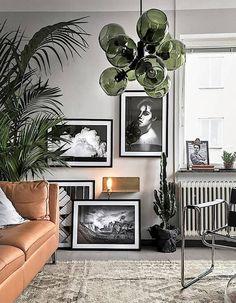 Cactus mêlé à de jolies photos encadrées