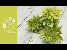 Чойсия или Шуазия тройчатая - зелень для букета из фоамирана - YouTube