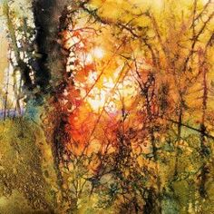Last Light in the Woven Hedgerow - Ann Blockley #watercolor jd