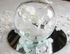 orchids in fish bowl - Google Search
