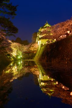 The hirosaki castle and cherry blossoms by Hirotaka Ihara on 500px