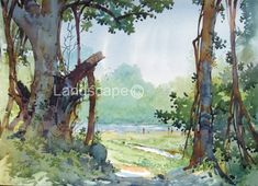 indian watercolor landscape paintings - Google Search