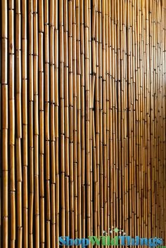 """Porch Privacy Solution -- Plain Bamboo Beaded Curtain 32""""  x 76""""  - 60 Strands"""