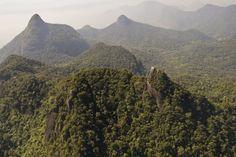Parque Nacional da Tijuca, Rio de Janeiro