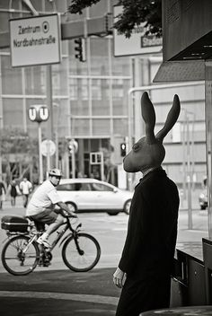 Bunny head on suited body ready for the city Absolutely understanding the spot that the Animal Masks, Animal Heads, Mein Freund Harvey, Creepy, Scary, Bunny Man, Good Knight, Rabbit Life, Dark Photography