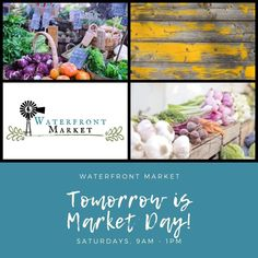 Tomorrow is Market Day! Cat Friendly Home, Eco Friendly, Green Slippers, Host Gifts, Knit Dishcloth, Scrubs, I Shop, Colours, Knitting