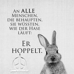 An ALLE Menschen, di e behaupten, sie wüssten, wie der Hase läuft: Er hoppelt. To ALL people who say they know how the rabbit runs: He hops. Best Quotes, Funny Quotes, Life Quotes, Motivational Quotes, Inspirational Quotes, Funny Texts, Humor Texts, True Words, Funny Pictures