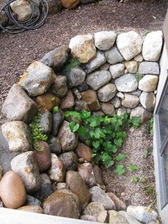 Stone Window well. This is an attractive idea for a situation that is usually ugly tin walls. This will look attractive from the inside also by annabelle