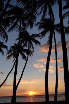1000+ images about God's beauty on Pinterest | Hawaii, Northern lights and Photos of nature