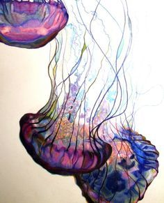 Jellyfish watercolor - doesn't always have to be upright. Jellyfish water color