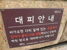 2014/03/24 - 서울 장마철에 안 뒤지려면 숙지는 필수가 아닌가 싶다.