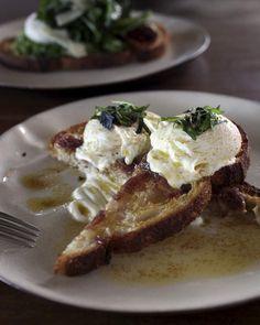 The buttered Arabian eggs from Anvil Coffee Co at Kirribilli. Sydney Cafe, Sydney Restaurants, Herb Salad, Greek Yoghurt, Molecular Gastronomy, Poached Eggs, Foods To Eat, Cafe Restaurant, Places To Eat