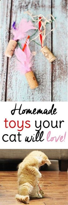 Cats Toys Ideas - Your cat will love these easy homemade cat toys made from wine corks. Don't have time to make toys? Come see our selection! #grandjunction #petstore - Ideal toys for small cats