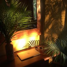 """All Things Sober Travel + Life on Instagram: """"Dreamiest workspace 🌿✨ ••••••••••••••••••••••••••••••••••••••••••••••••• ⠀ #mysoberverse #thesoberverse #costarica #goldenhour…"""" North And South America, Sober, Table Lamp, Lighting, Travel, Life, Instagram, Home Decor, Table Lamps"""