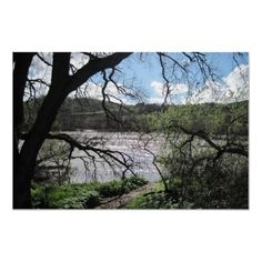 This is the Salinas River, it also represents of where George and Lennie are at. Salinas River, Of Mice And Men, Make Your Own Poster, Modern Artwork, Free Design, North America, Poster Prints, Places, Lugares