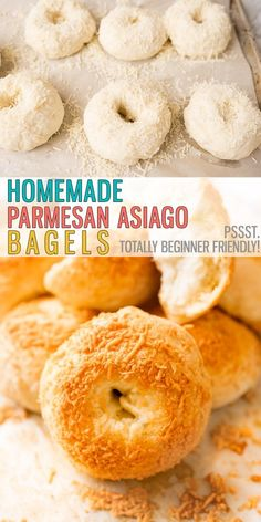Easy Asiago Cheese Bagels are chewy, full of flavor and easy to make. Utilizing the Instant Pot makes this recipe FAST! Say goodbye to store-bought bagels, it's time to make them homemade! |Cooking with Karli| #asiago #bagel #bagelrecipe #easy #bagel #breakfastrecipe #homemade #easy (EXCHANGE TOPPING TO MAKE EVERY THING BAGELS) Cheese Bagels, Asiago Cheese, Pots, Savoury Biscuits, Donut Muffins, Biscuit Bread, Best Instant Pot Recipe, Gypsy Soul, One Pot Meals