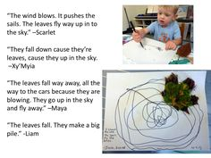 Children building their own theories and sometimes a community theory-Marla McLean-WONDERFUL WORK:-)
