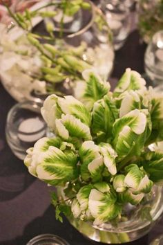 White Parrot Tulips for an understated table centrepiece #partyflowers #eventflowers #tulips #whitetulips #tablecentrepiece